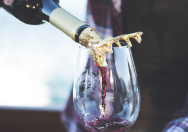 Animal Wine Aerator Elk Eagle Bear Dog